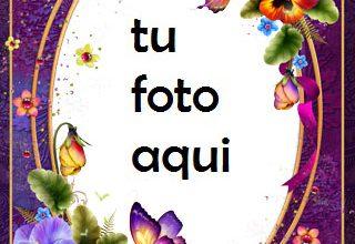 Mariposas Finas Y Rosas Maravillosas Marco Para Foto 320x220 - Mariposas Finas Y Rosas Maravillosas Marco Para Foto