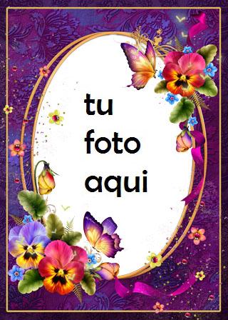 Mariposas Finas Y Rosas Maravillosas Marco Para Foto - Mariposas Finas Y Rosas Maravillosas Marco Para Foto