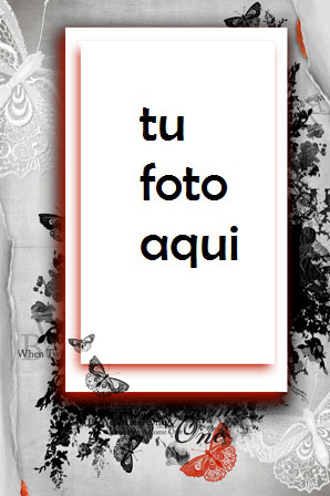 Mariposas Románticas Marco Para Foto - Mariposas Románticas Marco Para Foto