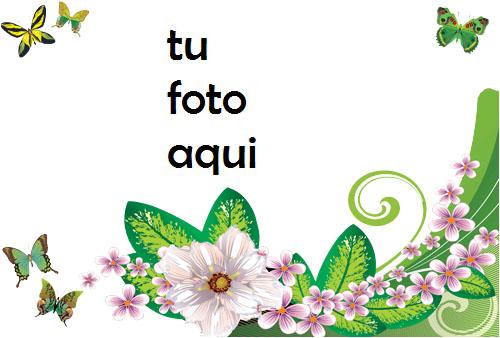 Mariposas Y Rosas Verdes Marco Para Foto - Mariposas Y Rosas Verdes Marco Para Foto