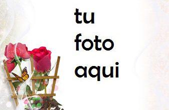 Mi Corazón Y Tu Corazón Amados Marco Para Foto 337x220 - Mi Corazón Y Tu Corazón Amados Marco Para Foto