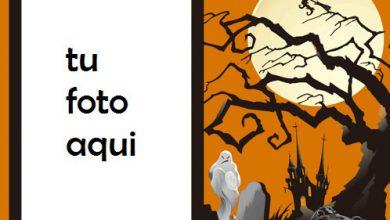 Mis Halloweens Felices Cuando Me Asusto Contigo Marco Para Foto 390x220 - Mis Halloweens Felices Cuando Me Asusto Contigo Marco Para Foto