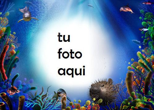 Mundo Submarino Marco Para Foto - Mundo Submarino Marco Para Foto