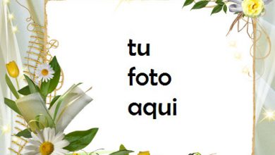 Photo of Muy Hermosas Flores Románticas Marco Para Foto