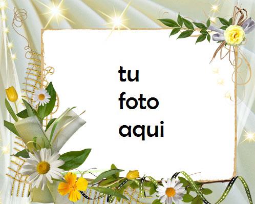 Muy Hermosas Flores Románticas Marco Para Foto - Muy Hermosas Flores Románticas Marco Para Foto