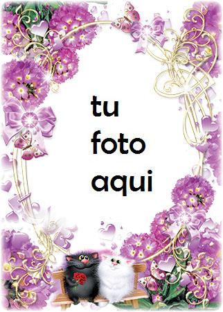 Nuestro Gran Amor Las Imagenes Romanticas Mas Bellas Marco Para Foto - Nuestro Gran Amor Las Imagenes Romanticas Mas Bellas Marco Para Foto
