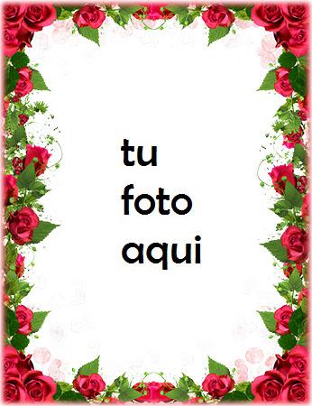 Obra Maestra De Flores Para El Día De San Valentín Marco Para Foto - Obra Maestra De Flores Para El Día De San Valentín Marco Para Foto