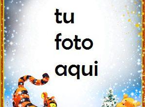 Photo of Osito De Peluche Para Niños Marcos Para Foto