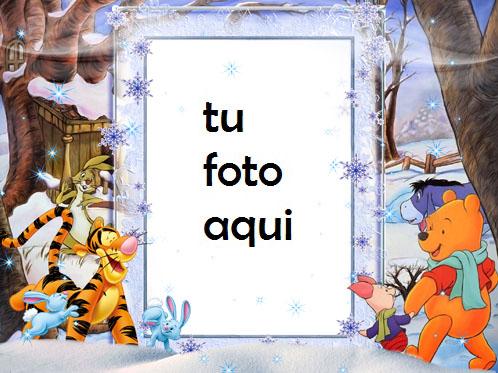 Osito Tigre Y Osito Marcos Para Foto - Osito Tigre Y Osito Marcos Para Foto