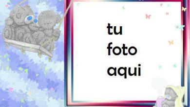 Oso De Peluche Romántico Marco Para Foto 390x220 - Oso De Peluche Romántico Marco Para Foto