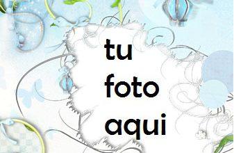 Pájaro Del Amor Marco Para Foto 337x220 - Pájaro Del Amor Marco Para Foto