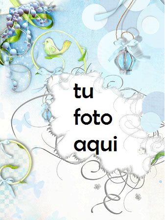 Pájaro Del Amor Marco Para Foto - Pájaro Del Amor Marco Para Foto