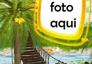 Palma A La Orilla Del Mar Marco Para Foto 316x220 - Palma A La Orilla Del Mar Marco Para Foto