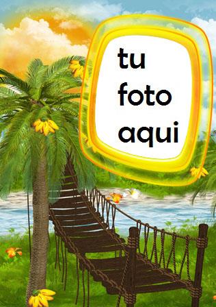 Palma A La Orilla Del Mar Marco Para Foto - Palma A La Orilla Del Mar Marco Para Foto
