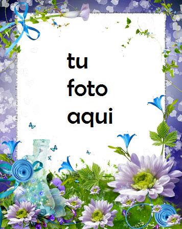 Paraíso De Rosas Azules Y Violetas Marco Para Foto - Paraíso De Rosas Azules Y Violetas Marco Para Foto