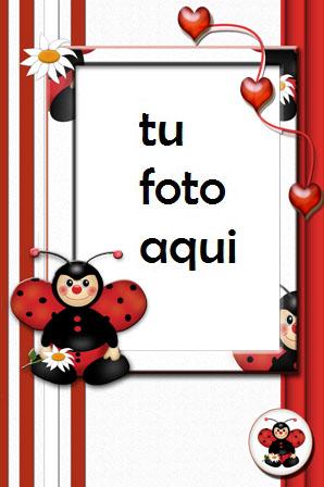 Pequeña Mariposa Amor Marco Para Foto - Pequeña Mariposa Amor Marco Para Foto