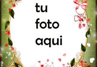 Photo of Románticas flores rojas para los seres queridos Marco Para Foto