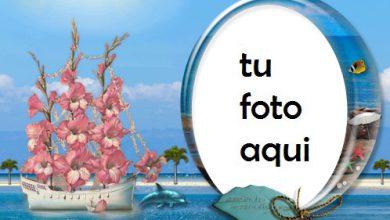 Rosa Y Mar Marco Para Foto 390x220 - Rosa Y Mar Marco Para Foto