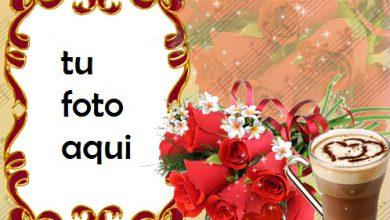 Rosa roja del amor Marco Para Foto 390x220 - Rosa roja del amor Marco Para Foto
