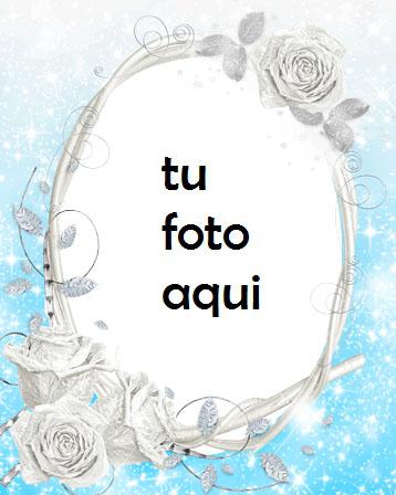 Rosas Blancas Marco Para Foto - Rosas Blancas Marco Para Foto