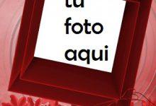 Rosas Rojas Adornan El Marco Del Día De San Valentín Marco Para Foto 220x150 - Rosas Rojas Adornan El Marco Del Día De San Valentín Marco Para Foto