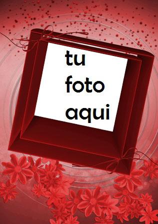 Rosas Rojas Adornan El Marco Del Día De San Valentín Marco Para Foto - Rosas Rojas Adornan El Marco Del Día De San Valentín Marco Para Foto
