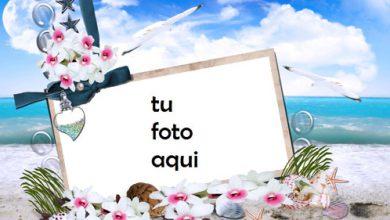 Rosas Y Flores Junto Al Mar Marco Para Foto 390x220 - Rosas Y Flores Junto Al Mar Marco Para Foto