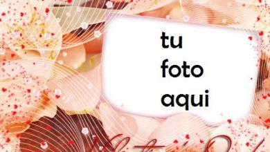 San Valentín Lleno De Amor Marco Para Foto 390x220 - San Valentín Lleno De Amor Marco Para Foto