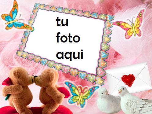 San Valentín Mariposas Y Valentines Birds Marco Para Foto - San Valentín Mariposas Y Valentines Birds Marco Para Foto