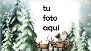 Santa En Camino Marco Para Foto 390x220 - Santa En Camino Marco Para Foto