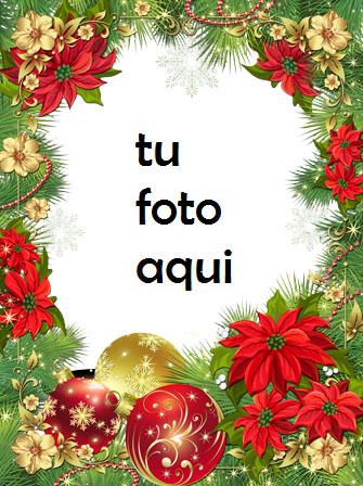 Se Levanta La Estrella De Navidad Marco Para Foto - Se Levanta La Estrella De Navidad Marco Para Foto