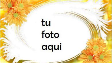 Soleada Marco Para Foto 390x220 - Soleada Marco Para Foto