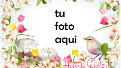 Photo of Te Deseo Una Pascua Brillante Y Feliz Marco Para Foto