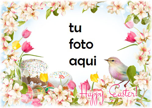 Te Deseo Una Pascua Brillante Y Feliz Marco Para Foto - Te Deseo Una Pascua Brillante Y Feliz Marco Para Foto