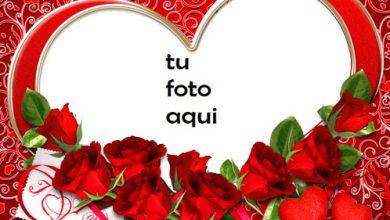 Te amo con todo mi corazon Marco Para Foto 390x220 - Te amo con todo mi corazon Marco Para Foto