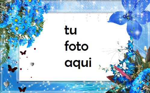 Tiernas Flores Azules Marco Para Foto - Tiernas Flores Azules Marco Para Foto