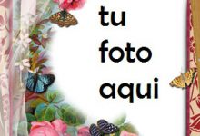 Un Paraíso De Flores Rojas Marco Para Foto 220x150 - Un Paraíso De Flores Rojas Marco Para Foto