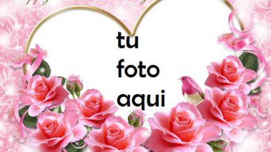 Photo of Una Imagen De Una Rosa Rosa Y Tarjetas Rojas Para El Día De San Valentín Marco Para Foto