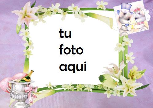 boda marcos Compromiso marco para foto - boda marcos Compromiso marco para foto