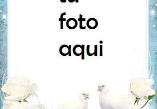 Photo of boda marcos Flores blancas de la boda marco para foto