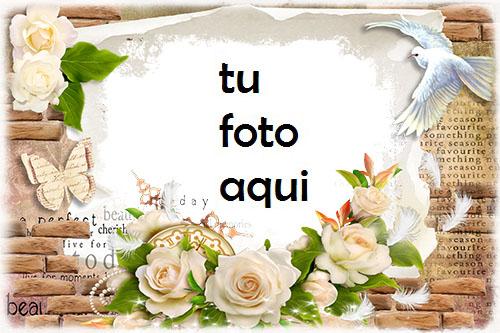 boda marcos Rosas blancas marco para foto - boda marcos Rosas blancas marco para foto