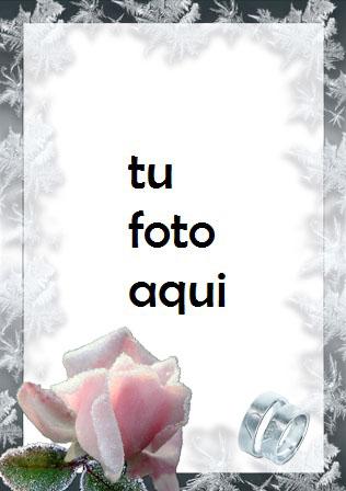 boda marcos Rosas blancas para bodas marco para foto - boda marcos Rosas blancas para bodas marco para foto