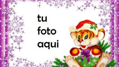 navidad marcos año divertido del tigre marco para foto 390x220 - navidad marcos año divertido del tigre marco para foto