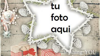 Photo of navidad marcos abeto del dragón marco para foto