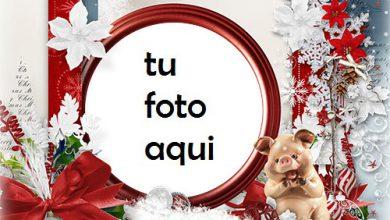 Photo of navidad marcos feliz santa marco para foto