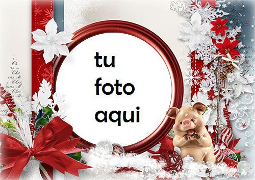 navidad marcos feliz santa marco para foto - navidad marcos feliz santa marco para foto