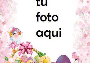 Photo of navidad marcos pájaro desea feliz pascua marco para foto