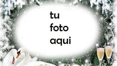 Photo of navidad marcos por los hermosos corazones en el año nuevo marco para foto