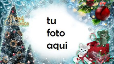Photo of navidad marcos regalos bajo el árbol de navidad marco para foto