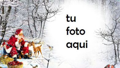 Photo of Marco Para Foto Amable Santa En El Bosque Profundo Invierno Marcos